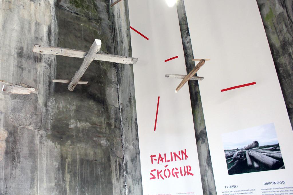 Flugfélagið Reki / Driftair - Þorleifur Eggertsson