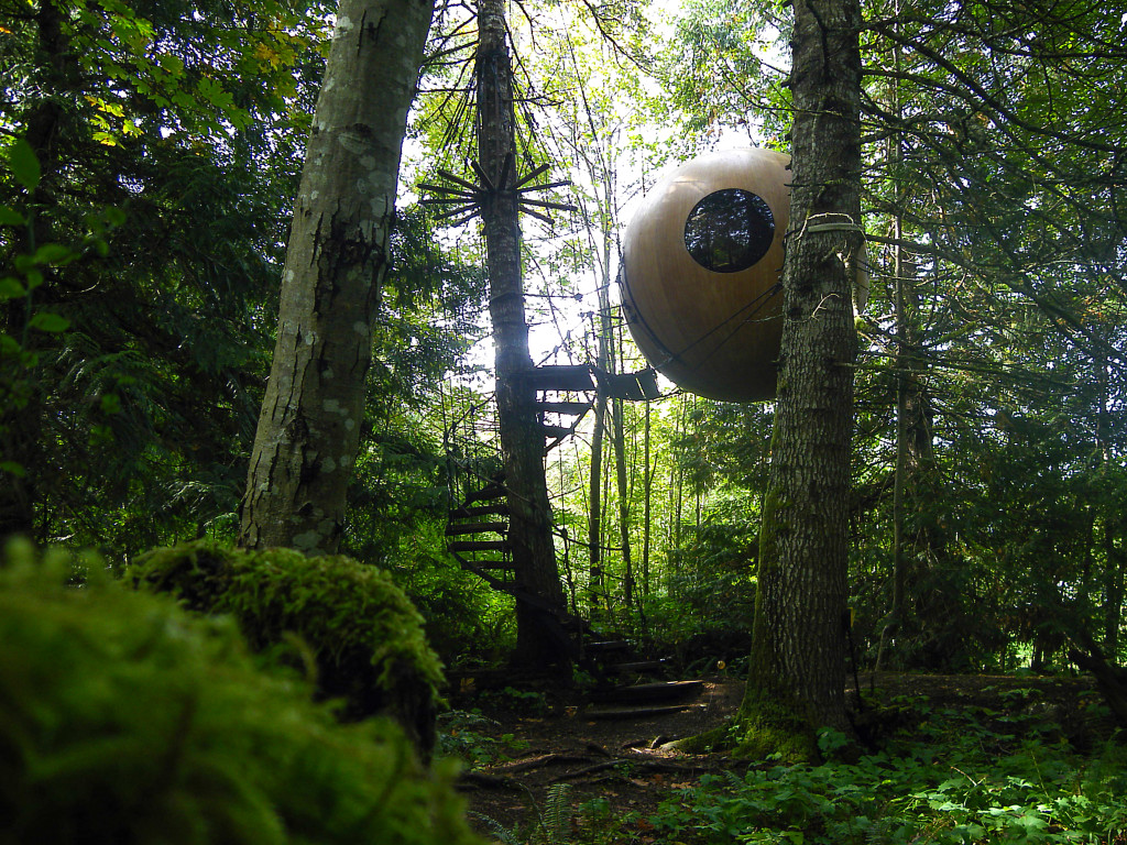 Treehouse from Free Spirit Sphere - Photo by Tom Chudleigh.